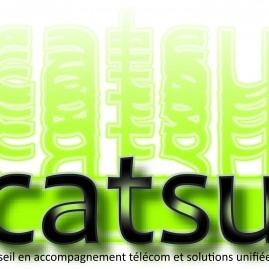Création Logo Catsu